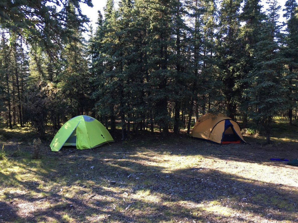 Riley Creek Campground in Denali