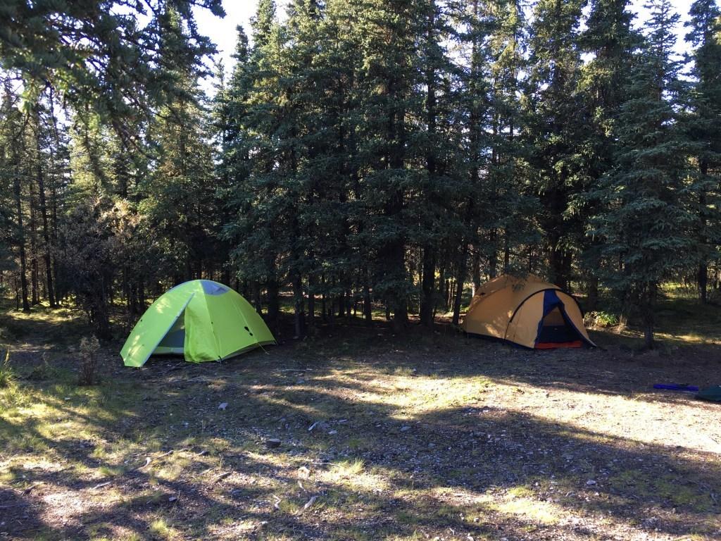 Riley Creek Campground in Denali
