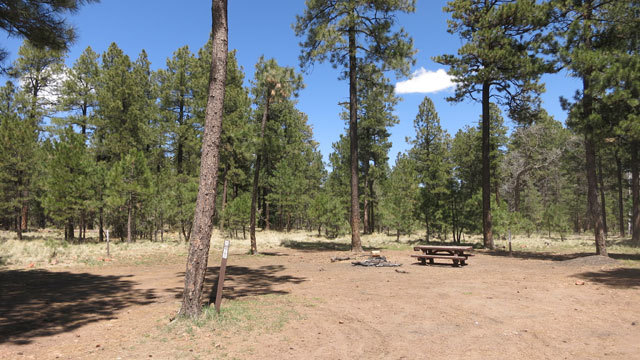 Payson Arizona ​Camping